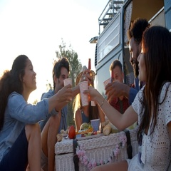 Friends make a toast at a picnic beside their camper van Stock Footage