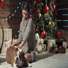 A beautiful woman petting bulldog at xmas eve Stock Footage