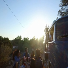Friends making a toast at a picnic beside their camper van Stock Footage