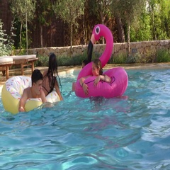 Teenage friends have fun with inflatables in a swimming pool, shot on R3D Stock Footage