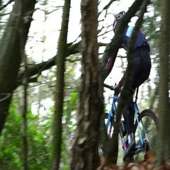 Young man cross-country cycling, seen through trees, shot on R3D Stock Footage