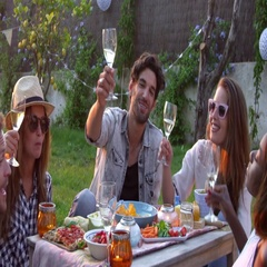 Group Of Friends Enjoying Outdoor Picnic In Garden Stock Footage