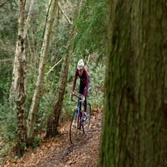Young man cross-country cycling through a forest, shot on R3D Stock Footage