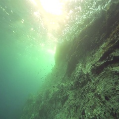 Underwater rocks with a flock of fish lit by sunrays Stock Footage