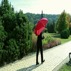 Mature man outdoors in autumn with a red umbrella Stock Footage