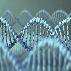 Spinning DNA molecules. Gene, genetic research or modern medicine concepts. 4K Stock Footage
