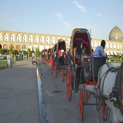 Isfahan Imam Square carriages waiting in line Stock Footage
