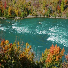 Autumn on the Niagara River. Downstream from Niagara Falls, a popular tourist Stock Footage