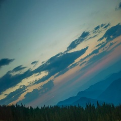 The mountain forest on a background of the sunrise. Tilt angle shot. Wide angle Stock Footage