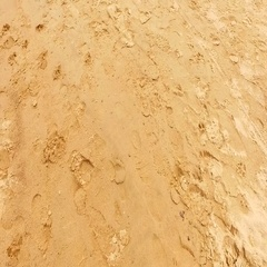 Following foot steps in a wet beach sand Stock Footage