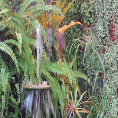 Decorative Fountains Stock Footage