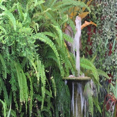 Decorative Outdoor Water Fountains Stock Footage