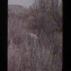 1956: a hunter stalks his prey LUBBOCK TEXAS Stock Footage
