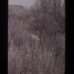 1956: a hunter stalks his prey LUBBOCK TEXAS Stock Footage