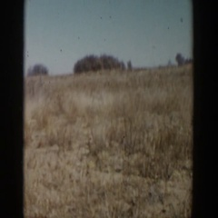 1957: a barren land with dried grass under the blue sky LUBBOCK TEXAS Stock Footage