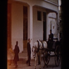 1959: a man riding in a horse and buggy down the street. PISA Stock Footage