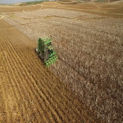 Israeli  agriculture - Combine shortness of cotton Stock Footage