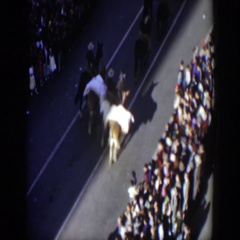1951: group of animals and people walking down the middle of a road  Stock Footage