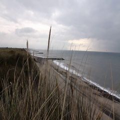 Denmark in autumn, coast Stock Footage