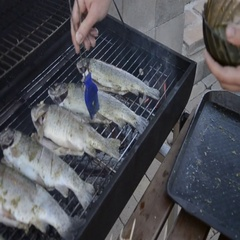 Young man grilling whole fishes on grate in garden. Grilled fresh trouts Stock Footage