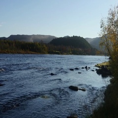 Pan view on Alta river full of autumn colors, in Alta, Finnmark, in north Nor Stock Footage