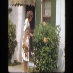 1945: a woman wearing a dress and picking a flower off a bush FLORIDA Stock Footage