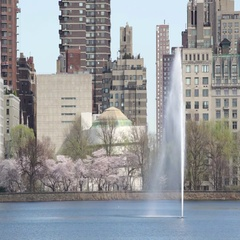 Spring at Central Park Reservoir Fountain, New York City Stock Footage