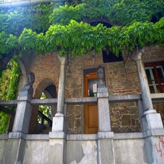 Ivy and beautiful walls made from bricks at Križanke Outdoor Theatre Stock Footage