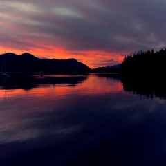 Boats Anchored in Rich Sunset Evening Cove Alaska Pan Right HD Stock Footage