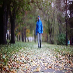 Senior man walking and relaxing in autumn park. 1920x1080 Stock Footage