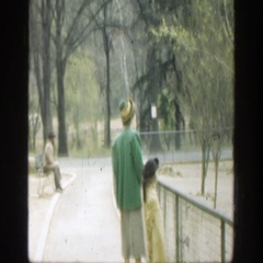 1949: people watching some geese as they walking on by. CINCINNATTI OHIO Stock Footage