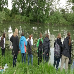 Research group of biologists collecting water samples Stock Footage