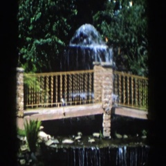 1954: a cascading waterfall in a scenic route of a botanical garden. WISCONSIN Stock Footage