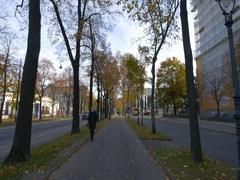 Autumn in Vienna video Stock Footage