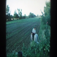 1957: family gardening in the spring. MICHIGAN Stock Footage