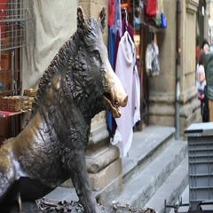 Il Porcellino or the piglet, the famous Florentine bronze fountain of a boar Stock Footage