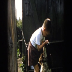 1958: young boy ties up his dog at the fence gate. MICHIGAN Stock Footage