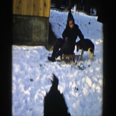 1957: child playing with his dogs in the snow. WISCONSIN Stock Footage