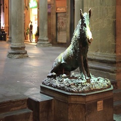 Il Porcellino or the piglet, the famous Florentine bronze fountain of a boar, o Stock Footage