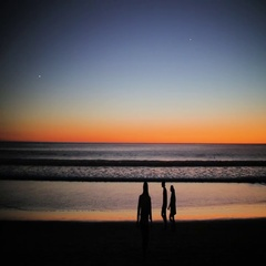 Silhouette of people walking on the beach at sunset Stock Footage