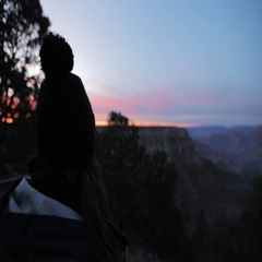 Woman looking at view from observation point in Grand Canyon Stock Footage
