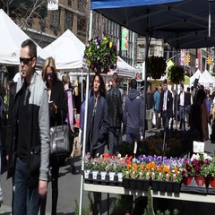 Union Square Greenmarket Farmers Market New York City Stock Footage