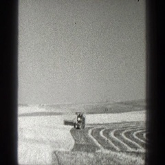 1936: a farmer harvesting crops CALIFORNIA Stock Footage