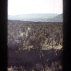 1936: sometimes the desert can be a lonely place. CALIFORNIA Stock Footage