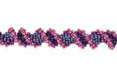 Double helix of DNA Stock Illustration