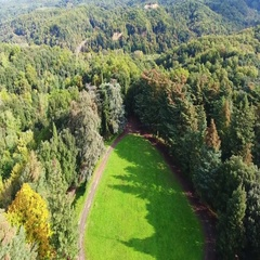 Aerial shot, flyover the woods in Italy, Europe, filmed with drone  Stock Footage