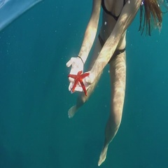 SLOW MOTION UNDERWATER: Woman swimming in blue ocean, holding starfish in hands Stock Footage
