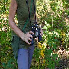 Female birdwatcher brings binoculars up to look at something. Stock Footage