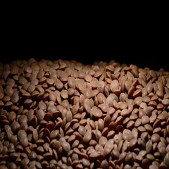 Raw lentils legumes vegetables gyrating on black background Stock Footage