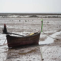 Wooden boat on the beach at low tide Stock Footage